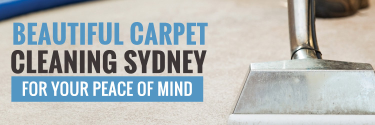 Carpet-Cleaning-services-in-Bondi Junction
