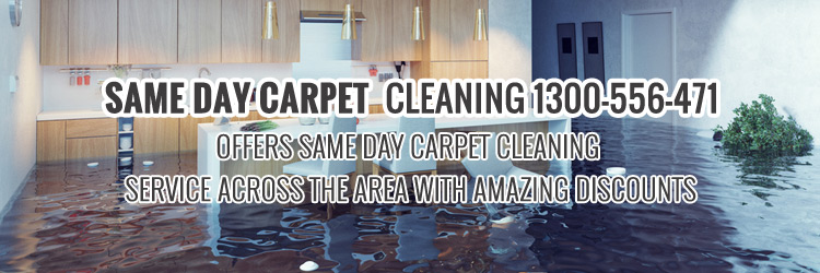 Same-Day-Carpe-Cleaning-service-Woronora Dam
