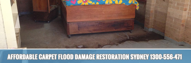 proficient-affordable-carpet-flood-damage-restoration-Cogra Bay