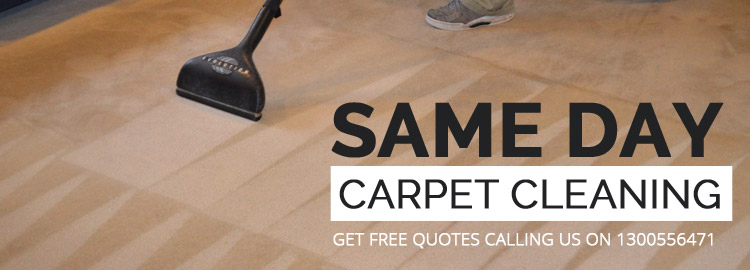 Same day Carpet Cleaning Services in Queenscliff