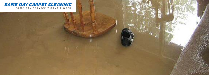 Carpet Flood Damage Restoration Freshwater