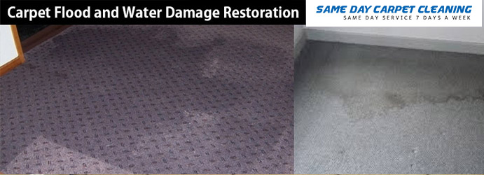 Carpet Flood Water Damage Restoration Raby