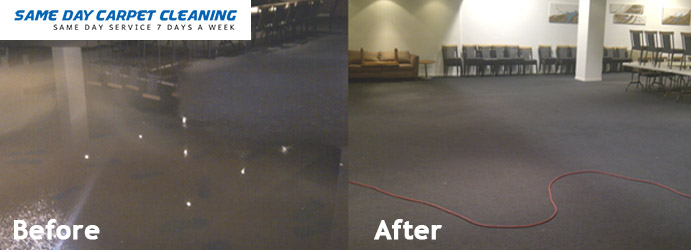 Carpet Flood Water Restoration Botany