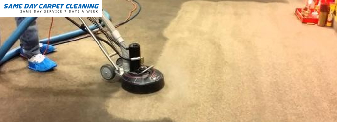 Carpet Stain Removal Fishing Point
