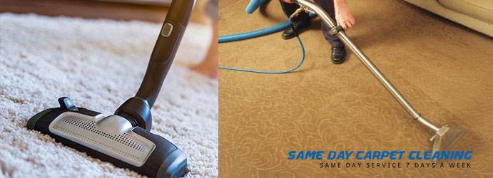 Carpet Sanitizing