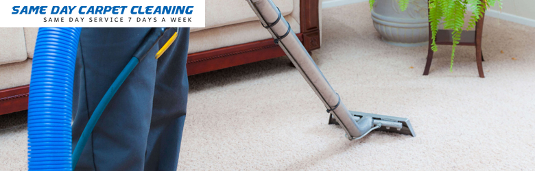 Professional Carpet Cleaning-Services