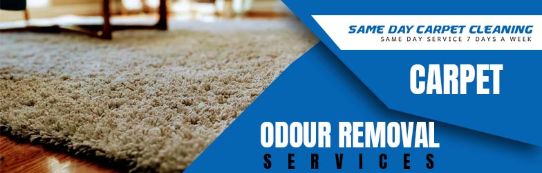 Carpet Odour Removal Services