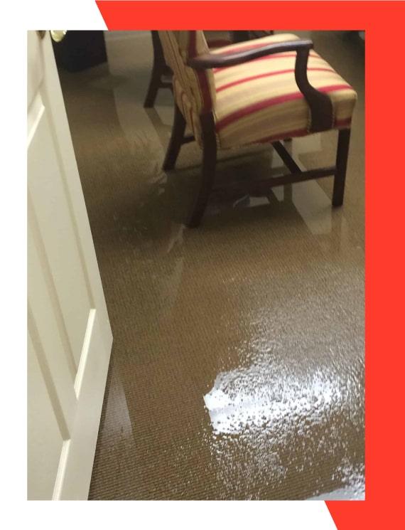 Best Carpet Flood Water Restoration Sydney