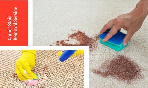 Carpet-Stain-Removal-PENRITH